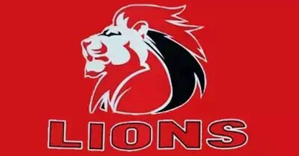 The Proud Of Joburg The Golden Lions Rugby Union Lions Rugby Rugby Wallpaper Lions Rugby Team