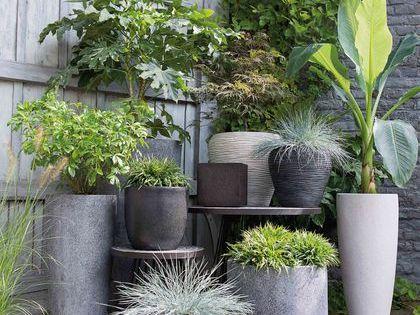 Décoration balcon : 12 pots de fleurs et jardinières  Jardins ...