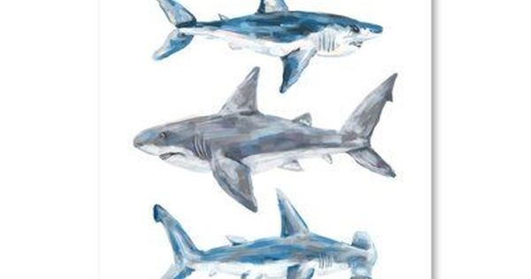 East Urban Home Shark Trio 1 Graphic Art Print Wayfair In 2020 Shark Decor Shark Painting Shark Art