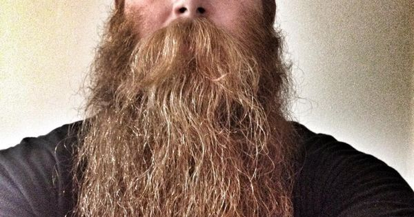 epic level red beard enormous huge mustache long thick natural length ginger redhead mustaches. Black Bedroom Furniture Sets. Home Design Ideas