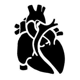 pumpkin template heart  Anatomical Heart Stencil | Pumpkin carving templates ...