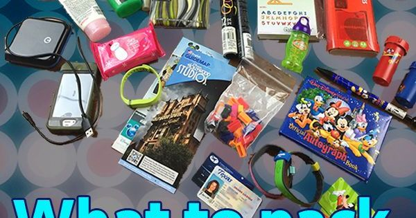 What to put in your Disney World park touring bag - different