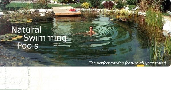 A biopool no chemicals eco friendly and beautiful uses for Pond friendly plants