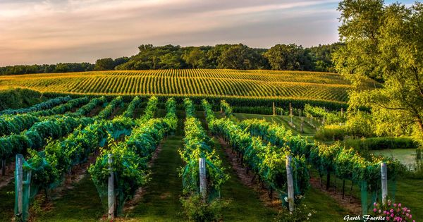 Barrel Head Winery Dubuque Ia Hdr Photography By Garth Fuerste