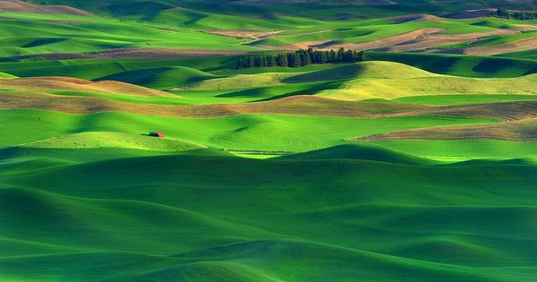 One of the most underrated places to visit. . .the Palouse Hills