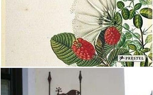 2 Most Beautiful Pflanzen Gezeichnet Ideas In 2020 Pflanzen Zeichnen Beautiful