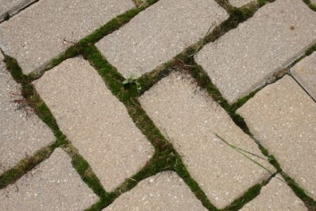 Paver Restoration in Pointe-Claire QC