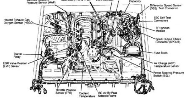 ford f150 engine diagram 1989 | http://www.2carpros.com ...