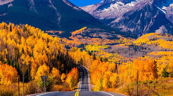 Fall color, Colorado Highway 145 in the San Juan Mountains, near Telluride,