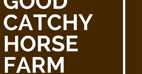 27 Good Catchy Horse Farm Slogans