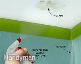 10 Minute Home Repairs Mildew Stains Get Rid Of Mold Mold In Bathroom