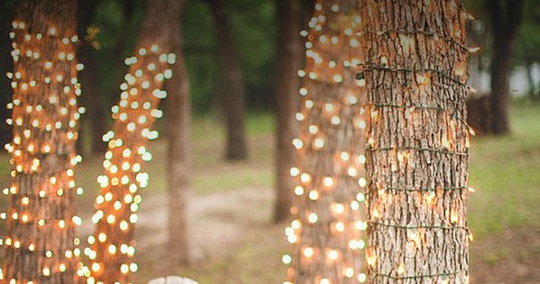 String Lights Around Tree Trunk : 13 Ways to Decorate With String Lights Right Now Tree trunks, Yards and Wraps