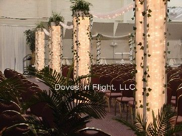 Chair Covers Of Lansing Columns And Backdrops Wedding Backyard