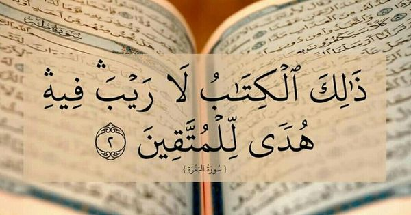 Pin By Sehrish Amin On الآيات القرآنية والحديث Quran Verses Quran Quotes Prayer For The Day