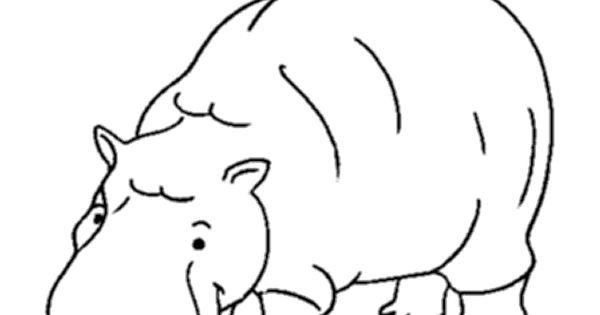 Wild Animal Coloring Page Hippopotamus Coloring Page