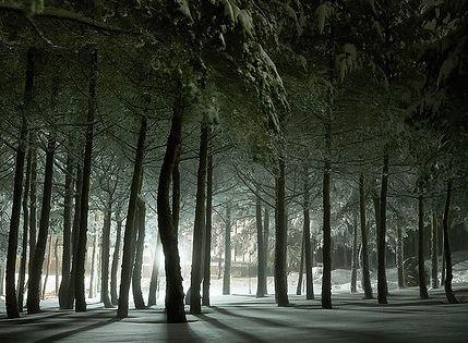 frozen light in a snow weekend, MANZANEDA ☃ by Paulo Brandão, via