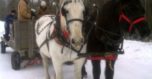 pin snow ride carriage - photo #43