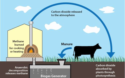 Biogas Frequently Asked Questions The Prepared Page Biogas