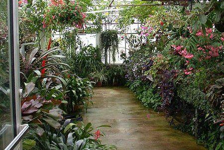 Small Greenhouse Design Small Greenhouse Design Tropical