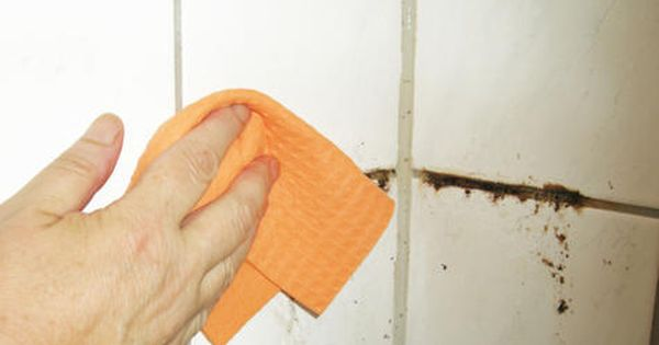 The nickel pincher how to get rid of mold naturally cleaning mold cleaning and remove mold - Natural ways remove mold ...