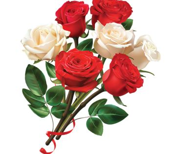 Red And White Rose Flower Rose Flower Png Rose Flower Rose Clipart
