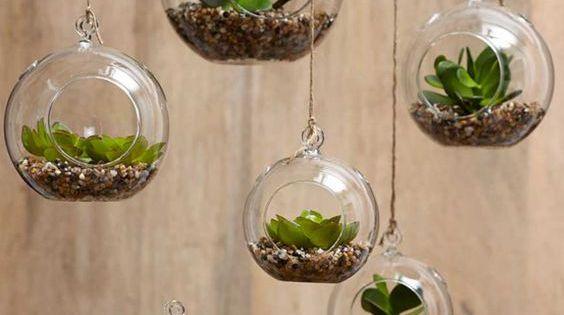 13 estupendas maneras para colgar tus plantas plantas for Decoracion para terrarios