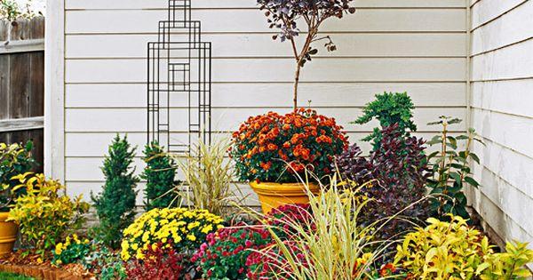 flower garden in house corner
