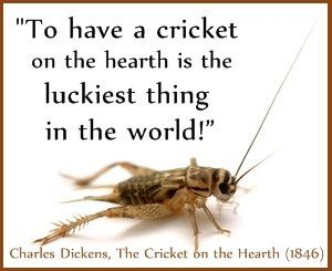 Crickets A Symbol Of Good Luck The Symbolism And Meaning Of The Insects Many Have Forgotten Cricket Insect Spirit Animal Meaning Animal Medicine
