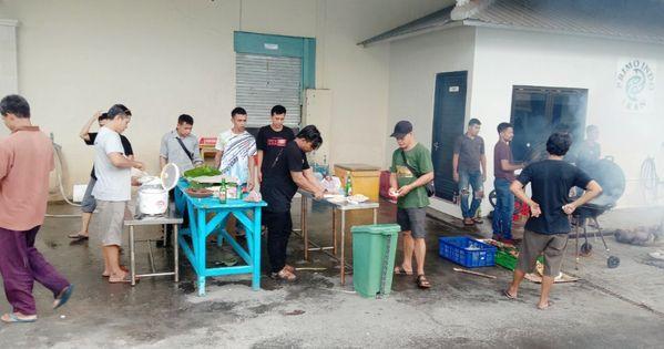 Primo Indo Ikan Di 2020 Anak Ikan