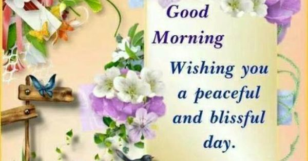 Blissful Good Morning Quotes: Good Morning, Wishing You A Peaceful And Blissful Day