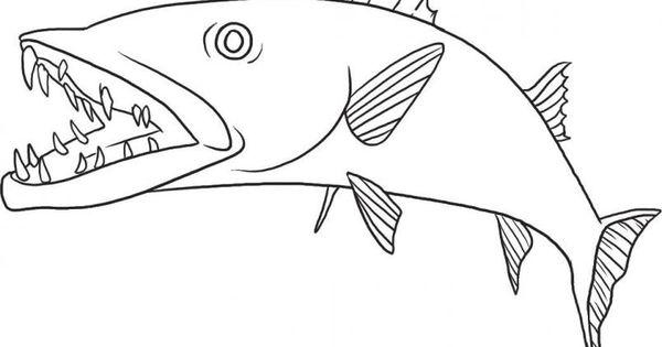 free downloadable jumbo fish coloring
