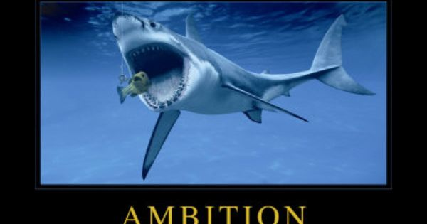 Ambition: Shark. Click to buy this Animal Motivational Poster ...