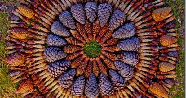 Pinecone Mandala by Kathy Klein (I love pine cones)
