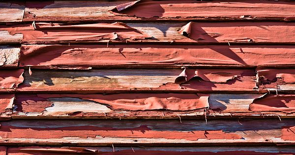 Painterly effect rendering of peeling paint on weathered clapboard siding the exterior - Exterior paint peeling concept ...