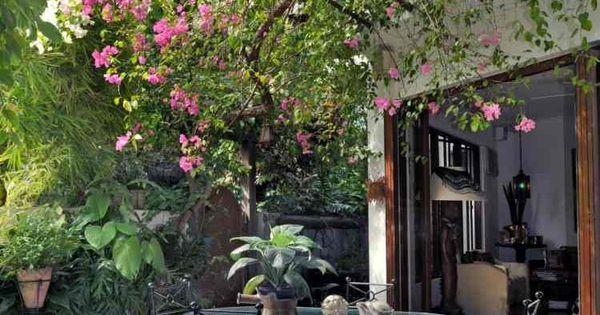 plantes grimpantes pour pergola 20 id es romantiques plante grimpante pergola et fleurs roses. Black Bedroom Furniture Sets. Home Design Ideas