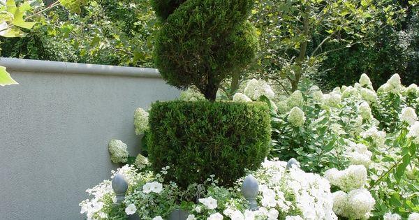 juniper topiary