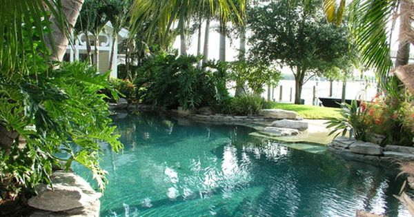 Pool design tropical pool tampa mjm design group for Pool design tampa