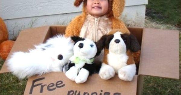 Homemade Halloween Costume Ideas for Women | Free Puppies - Homemade costumes