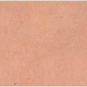 Skin Texture Human Skin Texture Skin Textures Skin Tone Chart