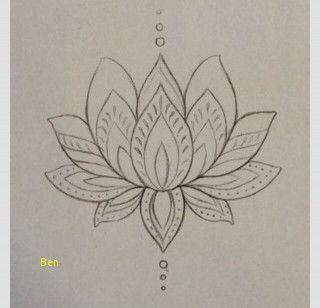 Fleur Lotus Dessin Fantastique 77 Nouveau Stock De Dessin