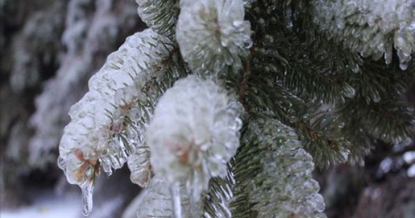 Sioux Falls Ice Storm 2013 Photo Ice Storm Photo Galleries