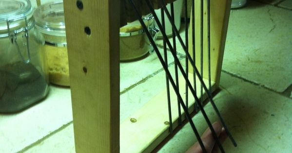 I Built This Trap Door That Allows My Homing Pigeons To