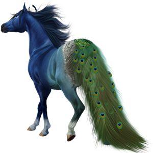 Thousand Eyes Pferd Friese Rappe 5548707 Howrse Horse