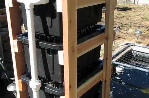Diy bakki shower with seive for a koi pond koi pond for Diy koi pond filter media