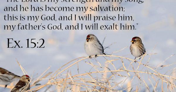 exodus 17 8 16 niv bible verses