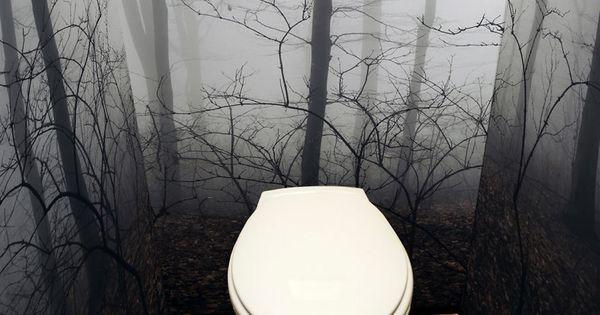 misty forest academy