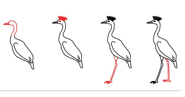 How to draw step by step how to draw a crane drawing for How to draw a crane step by step