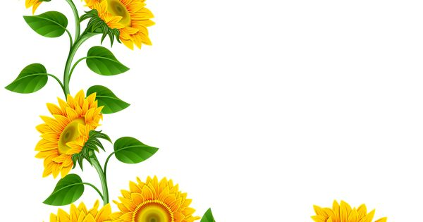 clip art borders sunflowers - photo #40