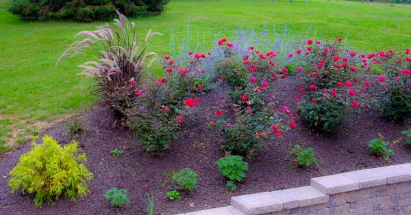 mulch landscaping ideas | Yard Landscaping | Beautiful Front Yard Landscaping Ideas