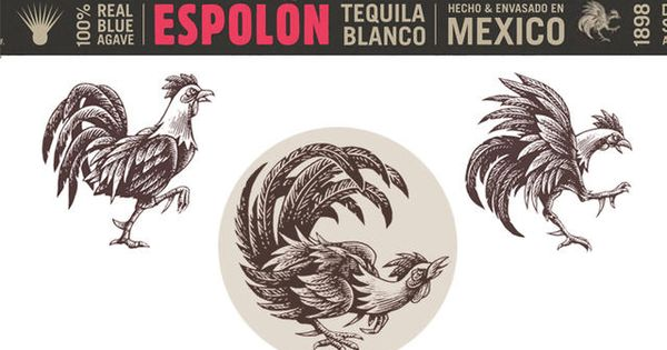 rooster Rooster Riot Pinterest